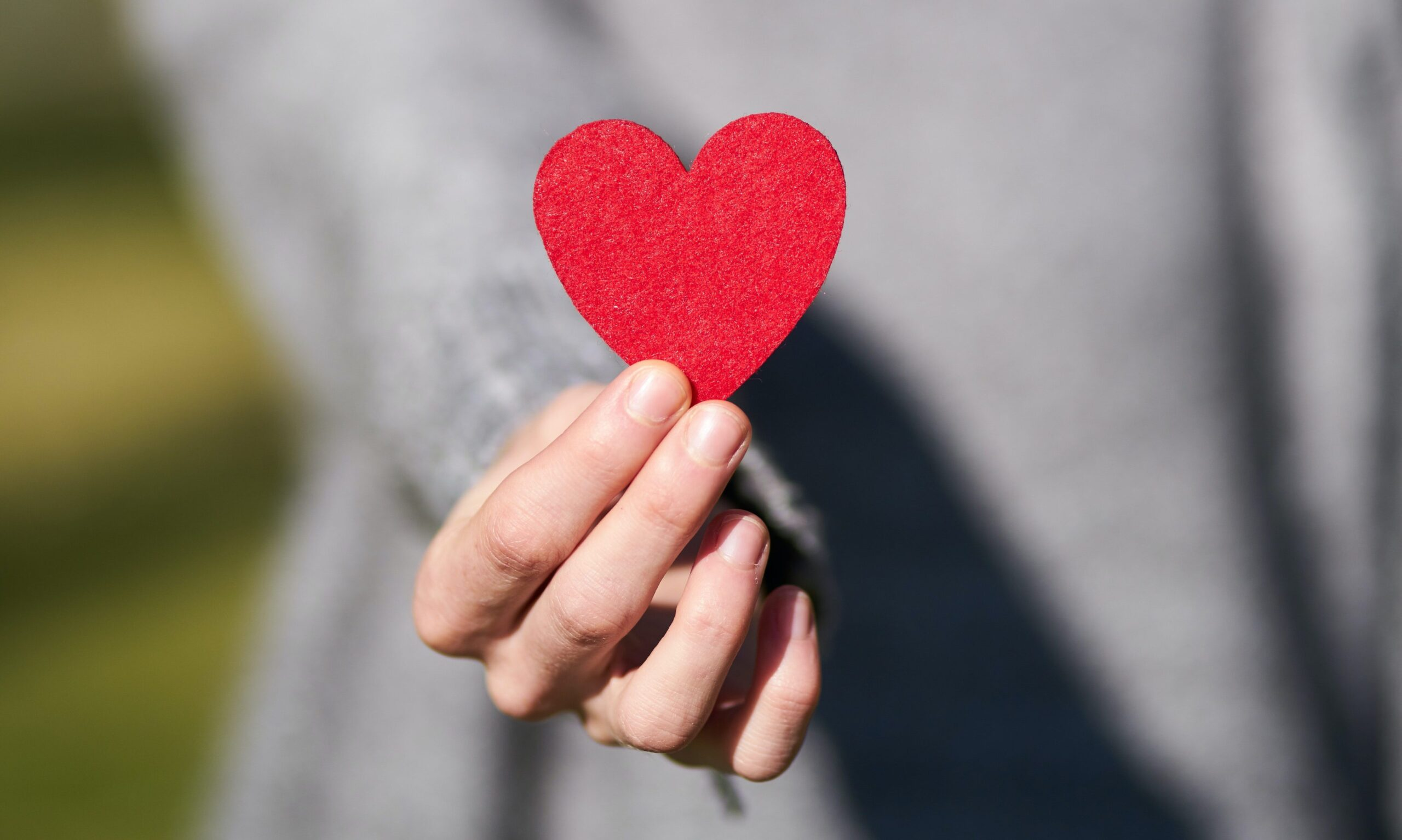 Perfil riesgo cardiovascular